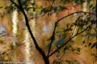 Fall Reflection_DSC6289-CW-6301