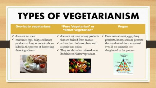 vegetarian-graphic1