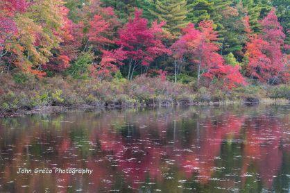 Autumn Reflection-CW-002