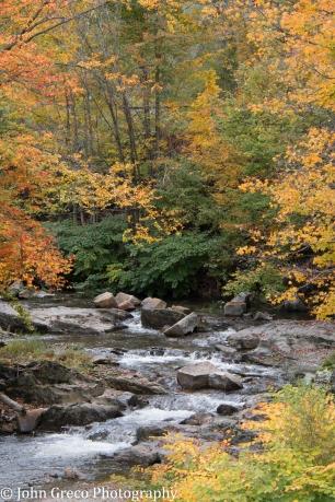 Vermont Stream CW-0124
